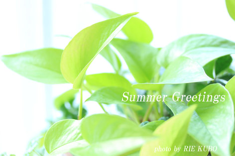 Summergreetings2010web